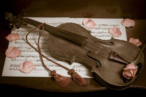 My ViOlIn by oxloveXfadesxo