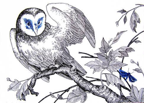 Birds #3