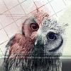 owl v.001 by SkinDye