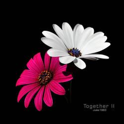 Together II