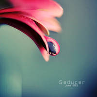 Seducer by Jules1983