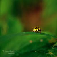 Wanderlust by Jules1983