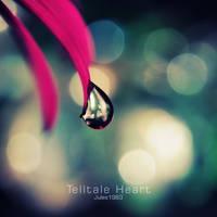 Telltale Heart by Jules1983