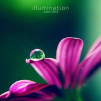 illumination by Jules1983