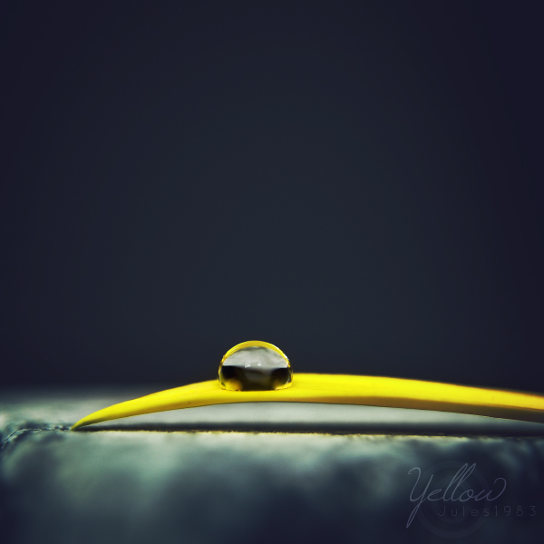 Yellow by Jules1983
