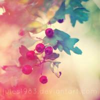 Berries by Jules1983