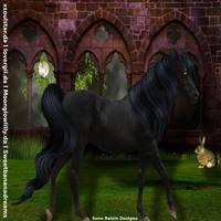 Midnight Arabians II Horse Avatar by frozenintime93
