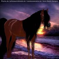 Sunset Arabian by frozenintime93