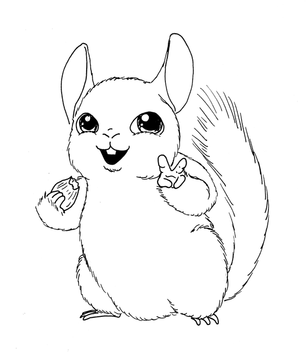 coloring pages chinchillas | Chinchilla Coloring Pages To Print Coloring Pages