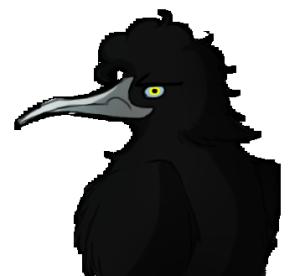 BKrook's Profile Picture