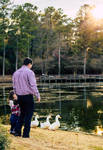 Daddy and Ducklings by Ozzkat
