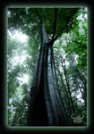 Tree of Wormia by trabi