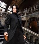 The Potion Master of Hogwarts