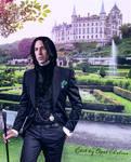 Severus Snape : Dark and Brooding