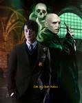 Voldemort The Dark Lord
