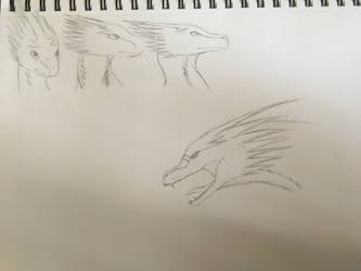 Little doodles of onewing by DragonFan656