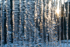 Sunny Ice on Glass by Chillstice