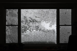 Blizzard Window by Chillstice