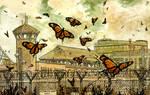 Butterflies by justsomedude86