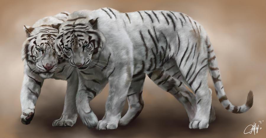 White Tiger by josephinekazuki