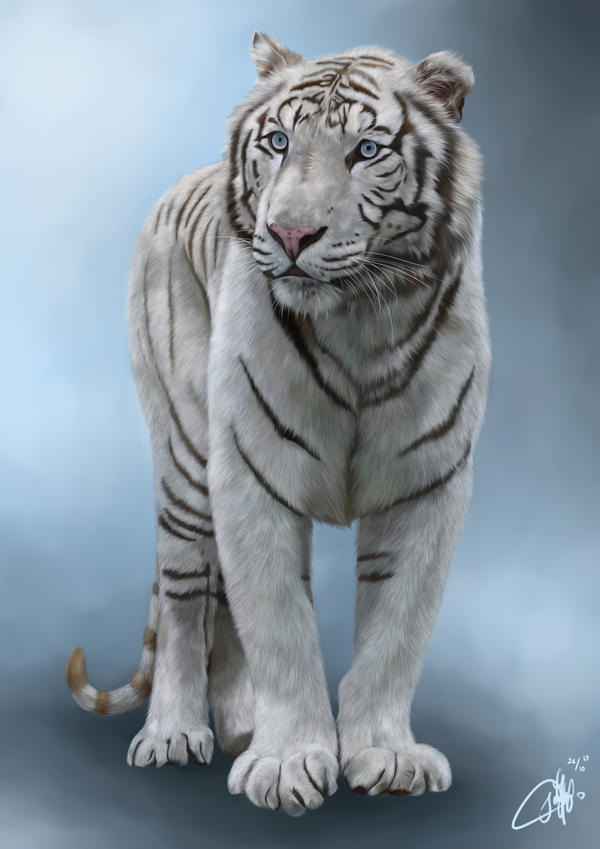 The White Tiger by josephinekazuki