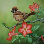 Sparrow and Adenium