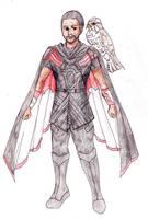 Falcon the druid by Acorna252525