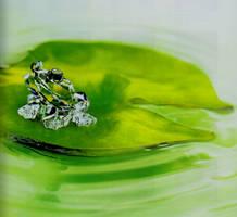 crystal frog by warlock111