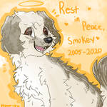 rest in peace, momo