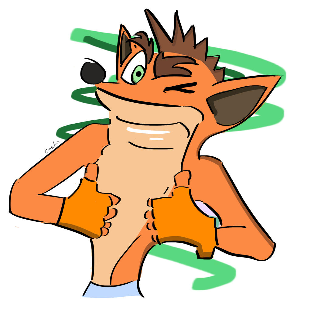 Crash Bandicoot Quick Line Drawing by zroxaszz