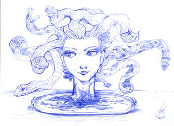 Medusa on plate by lorenpb