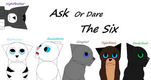 Ask Or Dare The Six by Snowy-Clover