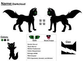Darkcloud Ref by Snowy-Clover