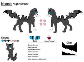 Nightfeather Ref by Snowy-Clover