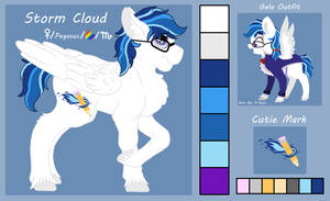 Storm Cloud Ref by Snowy-Clover