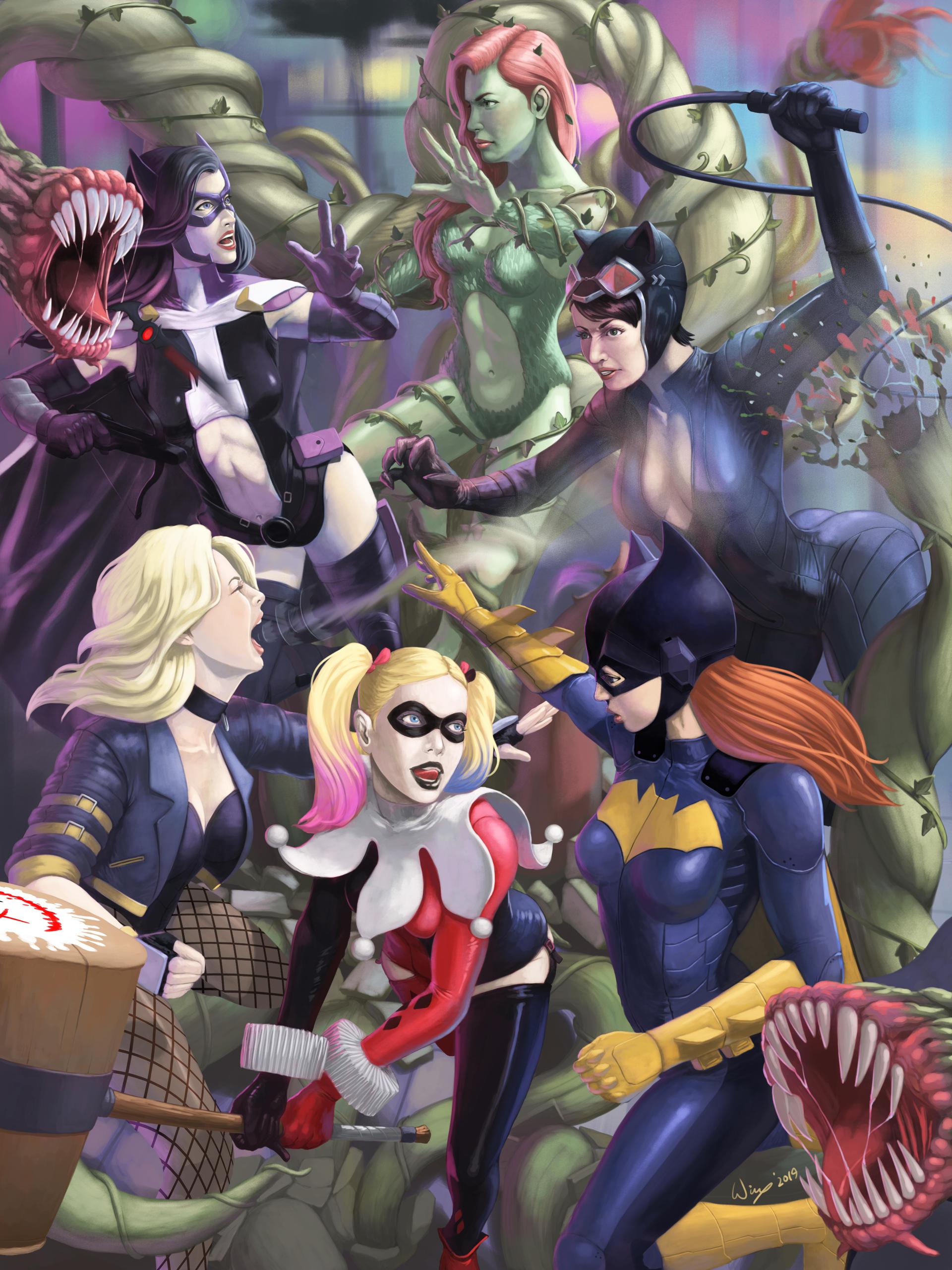 Gotham City Sirens Vs Birds Of Prey By Wingwingwingwing On Deviantart