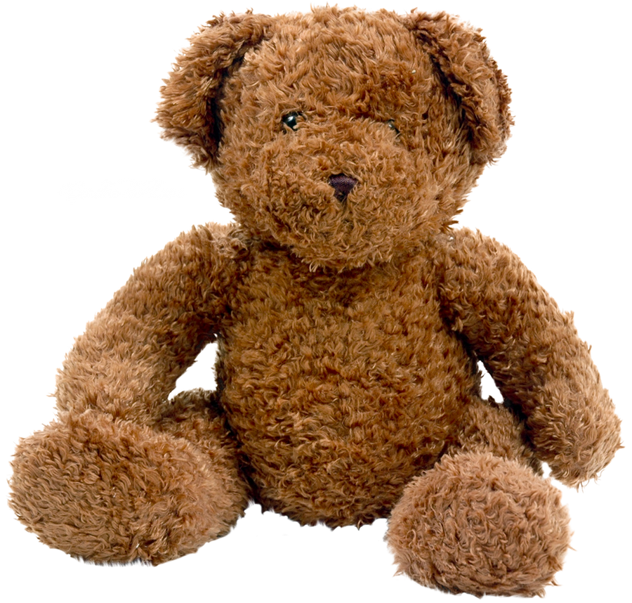 Teddy bear PNG by cendredelune
