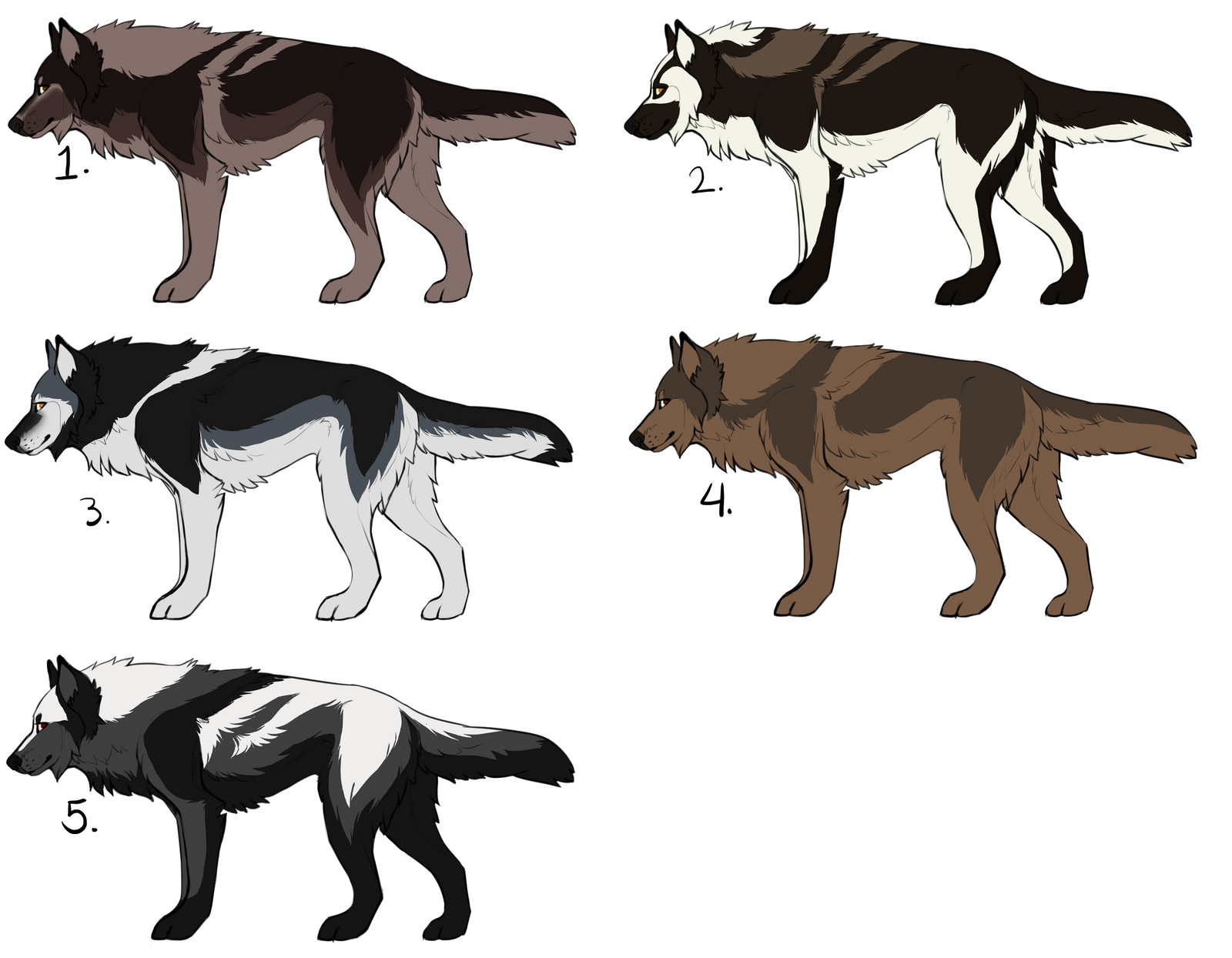 Wolf Adopts Batch 1 by CXCR