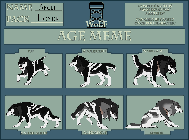 WoLF: Age Meme - Angel by CXCR