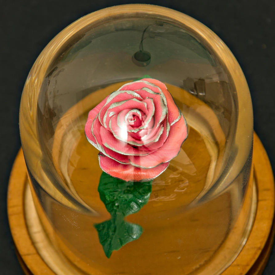 Beauty and the beast rose pink by broamj on deviantart beauty and the beast rose pink by broamj izmirmasajfo