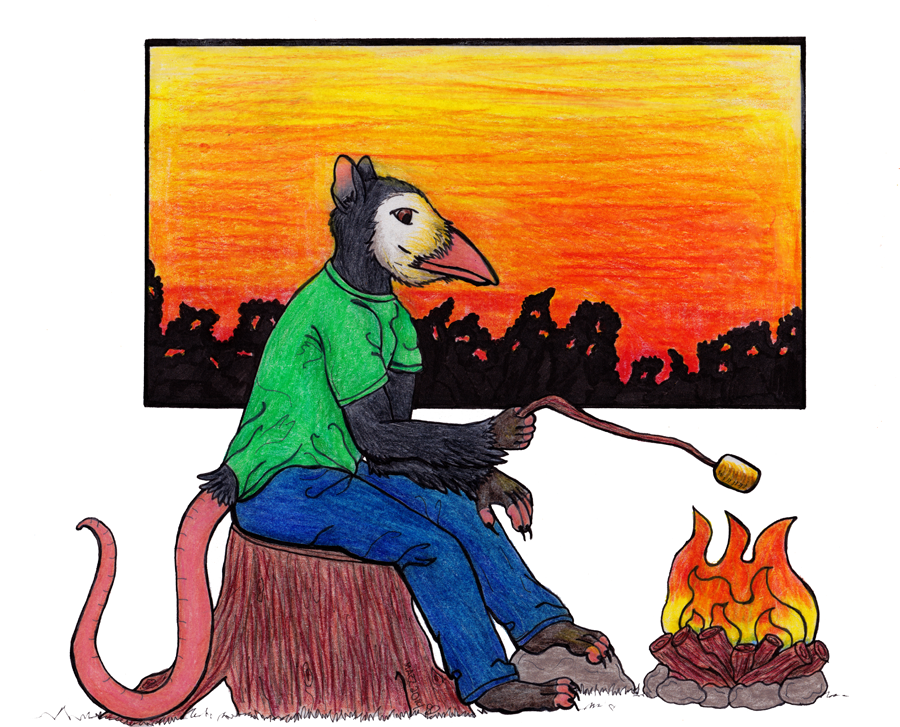 Campfire by TornFeathers