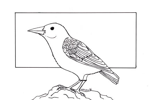 Common Starling Inks