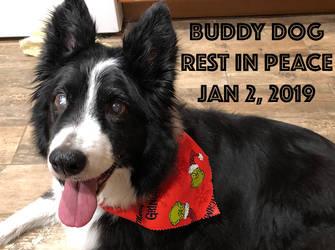 Rest well good friend