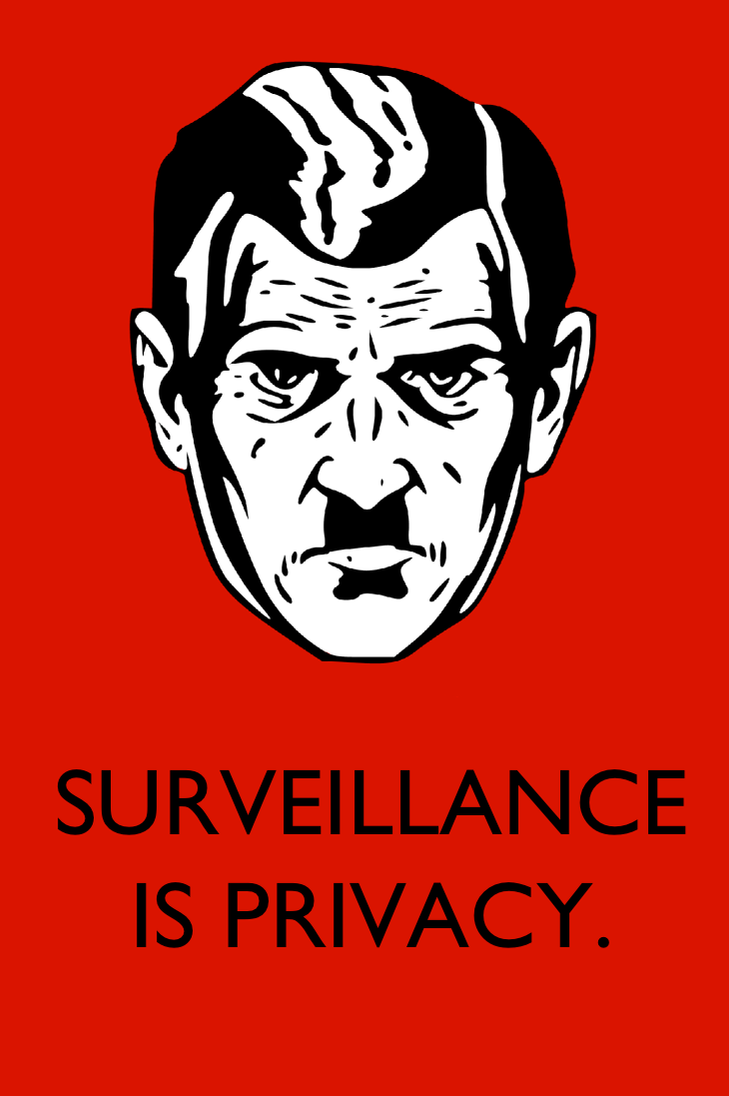 Surveillance Is Privacy by poasterchild