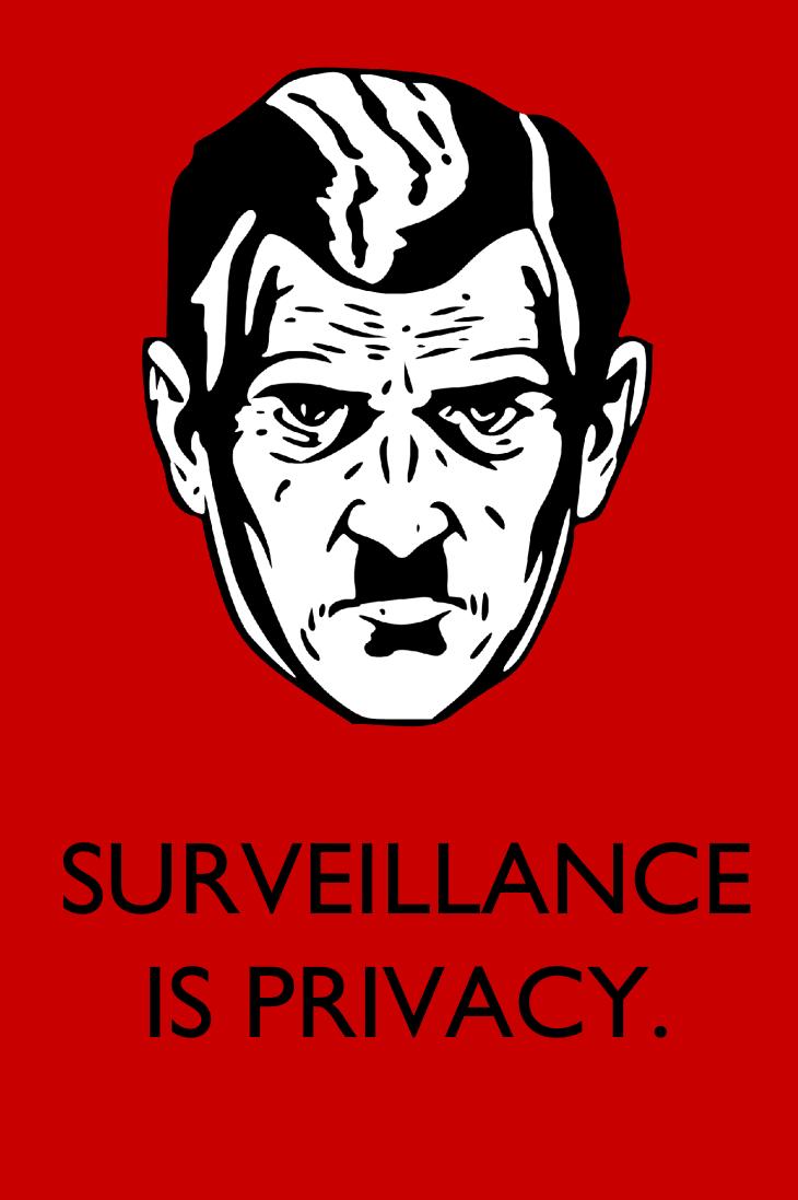 Surveillance Is Privacy by poasterchild