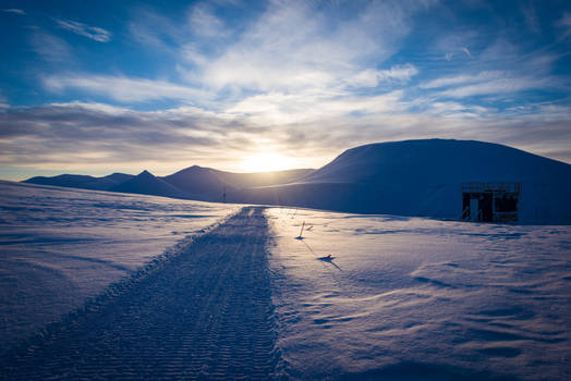 tracks in the arctic