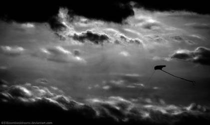 Fly by 518ZombiedDreams