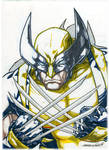 Wolvie (markers)