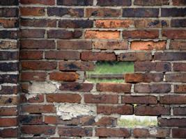 old wall 1 by AletheiaFelinea