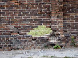 old wall 2 by AletheiaFelinea